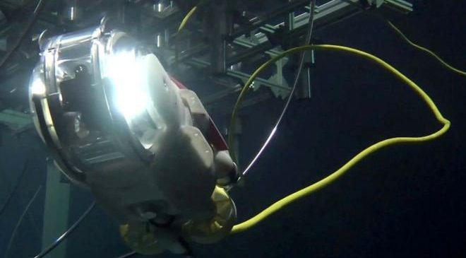 drone little sunfish,