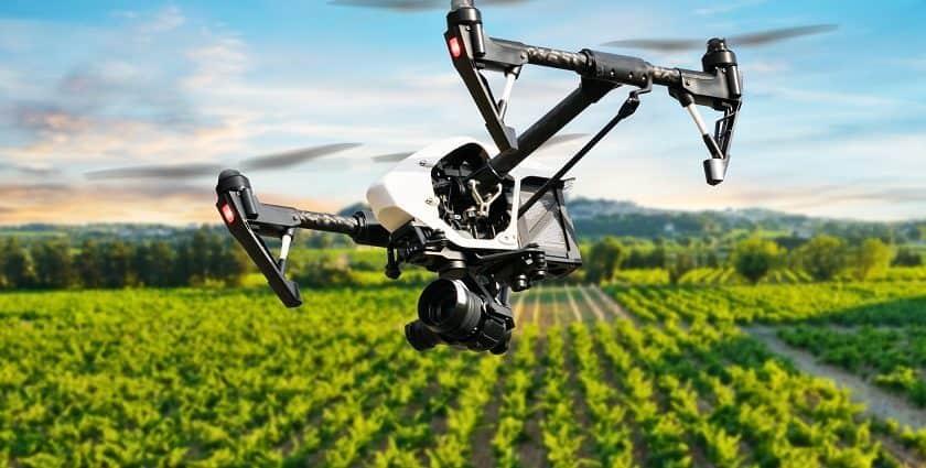 Droni agricoli contro i parassiti delle castagne