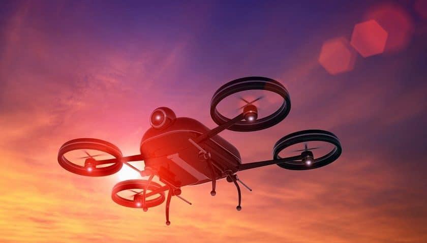 Droni per il monitoraggio di animali