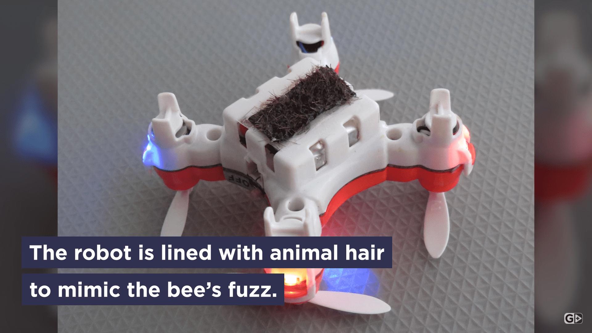 Droni per impollinare le piante