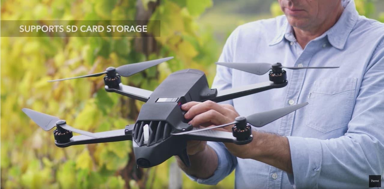 parrot bluegrass, drone parrot bluegrass,