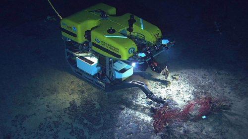 Droni sottomarini per ripulire i fiordi norvegesi