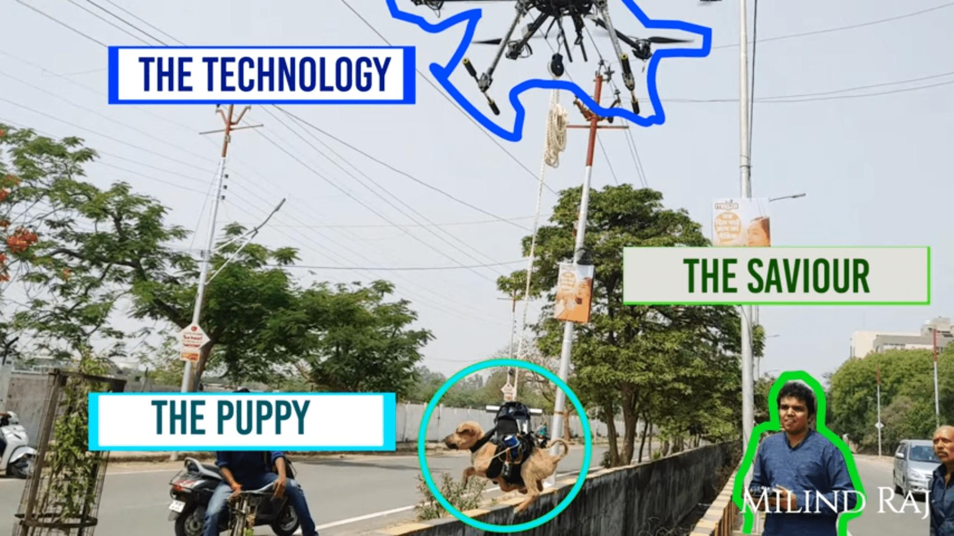 Drone che salva un cane