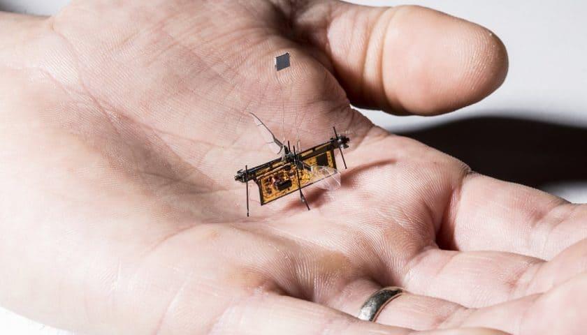 Droni insetto alimentati con un laser speciale