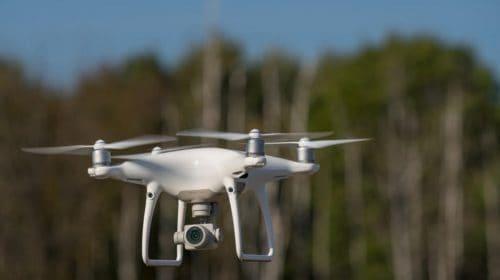 Droni per le guardie del WWF a difesa dei Lupi