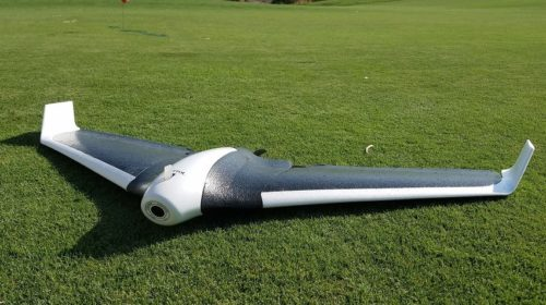 Droni per il monitoraggio di cavalli bradi