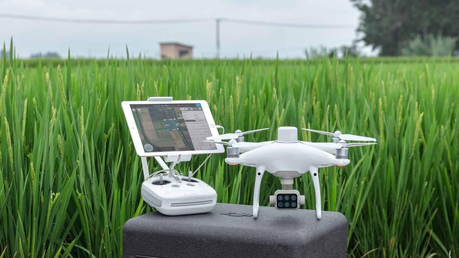 Drone Dji Phantom 4 con camera multispettrale