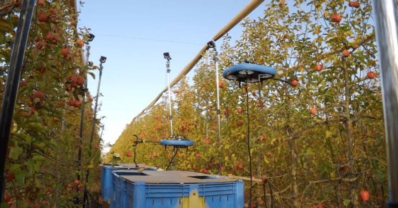 Droni per la raccolta della frutta