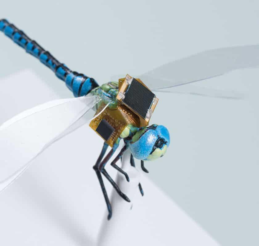 Droni sempre più piccoli e agili come insetti